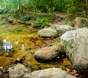 Mountain stream in a forest. River in the jungles with green and yellow mountains, Khao Sok National Park, Surat Thani Province, Thailand Stock Image