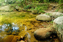 Mountain stream in a forest. River in the jungles with green and yellow mountains, Khao Sok National Park, Surat Thani Province, Thailand Royalty Free Stock Image