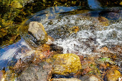 Mountain stream in a forest. Yellow rocks are seen through the clear water flowing, Khao Sok National Park, Surat Thani Province, Thailand Royalty Free Stock Image