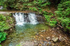 Mountain stream forming a water cascade Stock Photography
