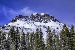 Mountain stream with fresh snow on sunny day stock photos