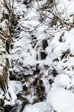 Mountain stream, frozen, in the woods with snow Stock Image