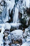 Mountain stream, frozen, in the woods with snow Stock Photography