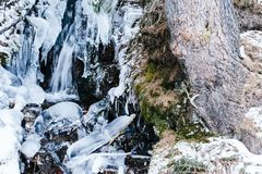 Mountain stream, frozen, in the woods with snow Royalty Free Stock Image