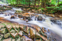 Mountain stream full of clean water Royalty Free Stock Images