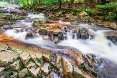 Mountain stream full of clean water Stock Image