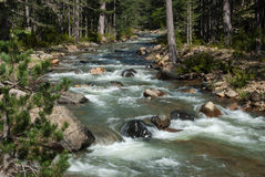 Mountain stream in Greece Stock Photos