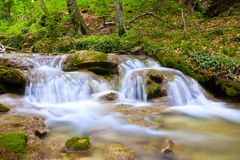 Mountain stream in green forest Stock Photography