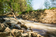 Mountain stream in green forest at spring time Royalty Free Stock Images