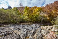 Mountain stream hardened lava. Mountain river revealed lava flows. Caucasus, Russia Royalty Free Stock Photography
