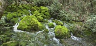 Mountain stream Hasta-Bash Stock Photography