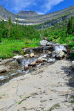 Mountain stream on a high alpine trail in glacier national park Stock Photos