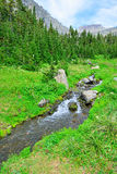 Mountain stream on a high alpine trail in glacier national park Stock Image