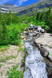 Mountain stream on a high alpine trail in glacier national park Stock Photography