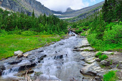 Mountain stream on a high alpine trail in glacier national park Royalty Free Stock Images