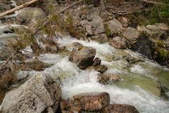 Mountain stream in High Tatras, Slovakia. View of Mountain stream in High Tatras, Slovakia stock photography