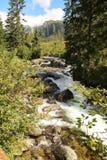 Mountain stream in High Tatras, Slovakia. View of Mountain stream in High Tatras, Slovakia Royalty Free Stock Image