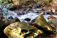 Mountain stream. Image of a stream that has had the water slowed down Royalty Free Stock Image