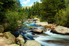 Mountain Stream. This image of a mountain stream was captured in the Wild Basin area of Rocky Mountain National Park Royalty Free Stock Photos
