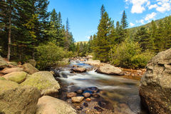 Mountain Stream. This image of a mountain stream was captured in the Wild Basin area of Rocky Mountain National Park in the autumn Royalty Free Stock Image