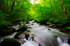 Mountain stream in japan Stock Photo