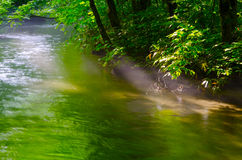 Mountain stream in japan Royalty Free Stock Photos