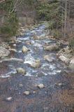 Mountain stream. Royalty Free Stock Image