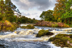 Mountain stream in Killarney. Autumn mountain stream in Killarney National Park, Ireland Royalty Free Stock Photography