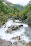 Mountain stream. The landscape of mountain stream Stock Photography