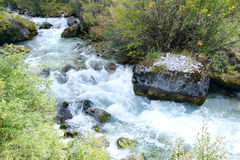 Mountain stream. The landscape of mountain stream Royalty Free Stock Images