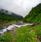 Mountain stream landscape in Svaneti Royalty Free Stock Image