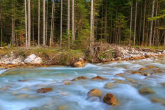 Mountain stream in the Lepena valley. In Slovenia Royalty Free Stock Photography