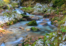 Mountain stream in the Lepena valley. In Slovenia Stock Photo