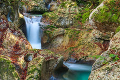 Mountain stream in the Lepena valley. In Slovenia Royalty Free Stock Photo