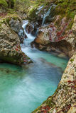 Mountain stream in the Lepena valley. In Slovenia Royalty Free Stock Image