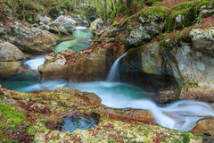 Mountain stream in the Lepena valley Stock Photos