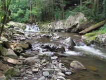 A mountain stream Stock Photos
