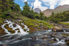 Mountain stream and meadow Stock Images