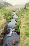 Mountain Stream. In the meadows. Italian Alps Stock Image