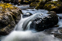 A mountain stream Royalty Free Stock Images