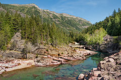 Mountain stream in Montana royalty free stock photo