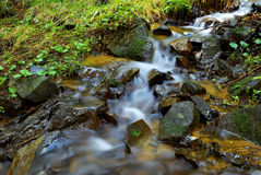 Mountain stream with mossy stones Stock Photo