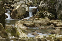 Mountain stream among the mossy stones. In the summer Stock Photos