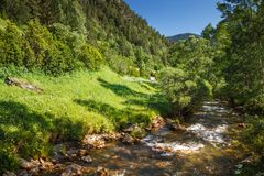 A mountain stream. A mountain stream surrounded by green vegetation on a sunny day Stock Image