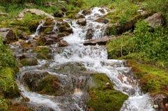 Mountain stream, mountain stream. Zailiyskiy Alatau. Royalty Free Stock Photo