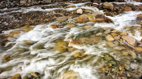 Mountain stream. Stock Image