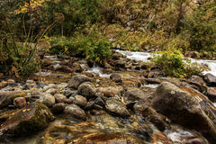 Mountain stream. Royalty Free Stock Photography