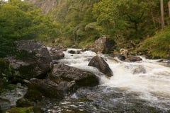 The mountain stream Stock Photography