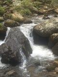 Mountain stream. Natural mountain stream Stock Photography
