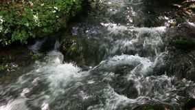 Mountain stream stock video
